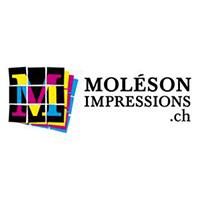 Moleson Impression